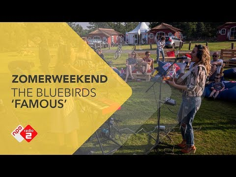 The Bluebirds - 'Famous' Live @ Zomerweekend | NPO Radio 2