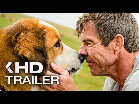 BAILEY - EIN FREUND FÜRS LEBEN Trailer German Deutsch (2017)