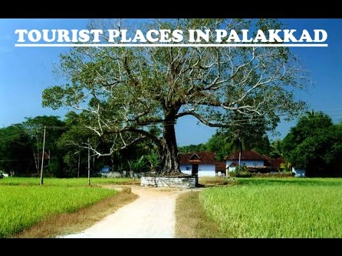 Top Tourist Places in Palakkad Kerala (Sightseeing/Tourism/Attractions)