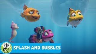SPLASH AND BUBBLES   Dive, the Honorary Reeftown Ranger   PBS KIDS