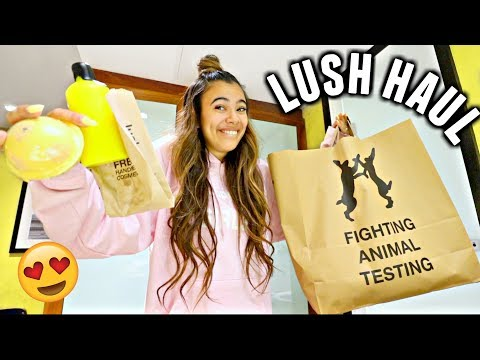 Spent $1,056 at Lush Sister snapped for a sale LUSH HAUL!