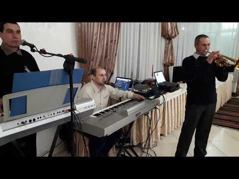 Muzica de petrecere 068566131