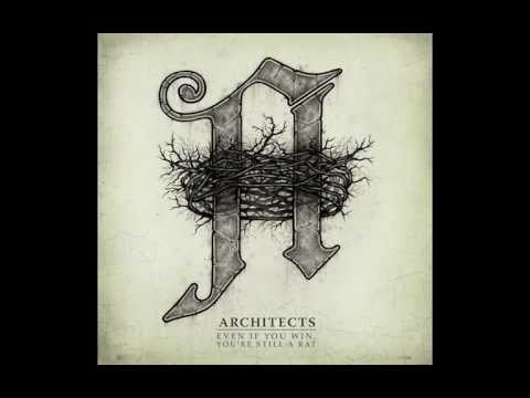 Architects - Even If You Win, You're Still A Rat