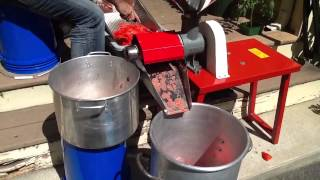 Processing tomatoes - removing water from tomatoes - canning tomato sauce