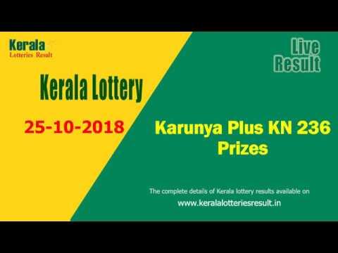 Kerala Lottery Karunya Plus Lottery KN-236 prize structure (25-10-2018)