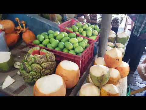 Male Maldives city market tour