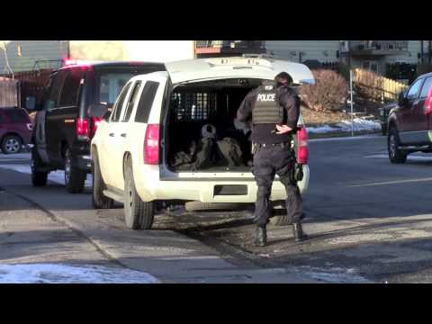 Calgary Police Service - Armed Police Standoff (Weapons Drawn)