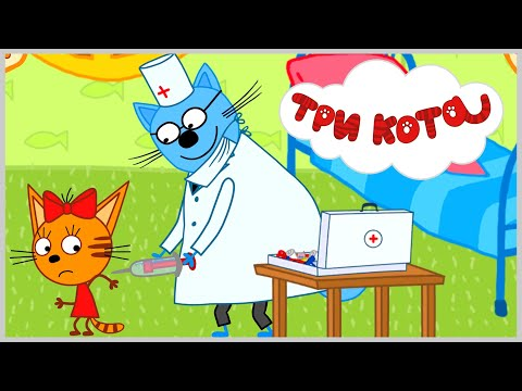 Вопрос: Как вылечить котёнка от простуды?