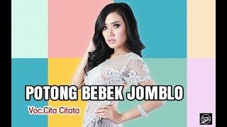 Gambar cover (Hits Song 2018) Cita Citata - Potong Bebek Jomblo