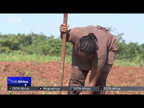 Talk Africa: Modernizing Tanzanian Agriculture