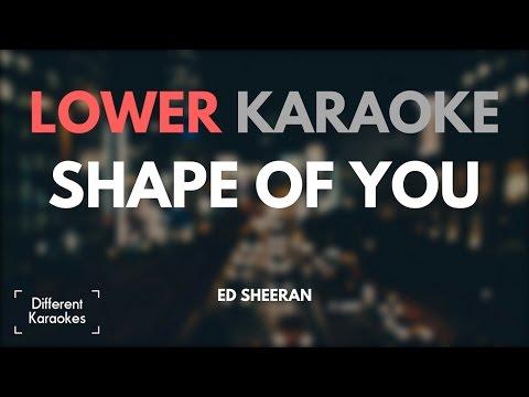 Ed Sheeran - Shape of You (LOWER Key Karaoke)