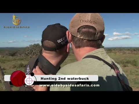 Waterbuck hunting with Side by Side Safaris