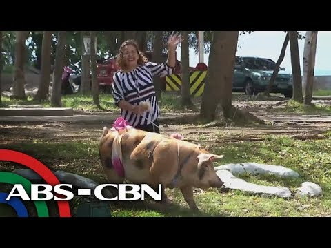 Rated K: Meet Davao's Super Babe Igat