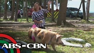 Rated K: Meet Davao