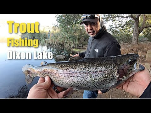 Trout Fishing Lake Dixon (Great Experience!)