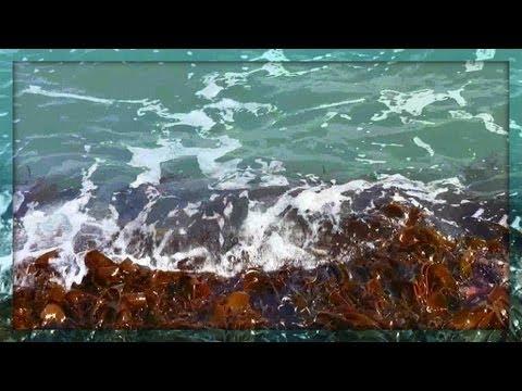 ♒ Colour Therapy - Green Sea Splashes