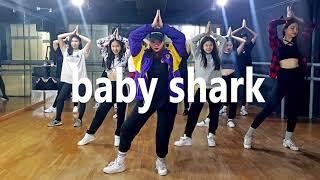 Baby shark remix / Dance Choreography 홍대댄스학원