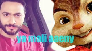 tamer hosny ft chipmunks - يامالي عيني