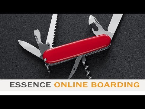 Silver Essence Online Boarding 06/12: Business Controllers
