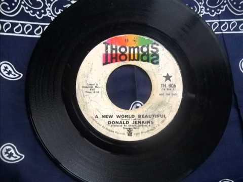 Donald Jenkins   A New World Beautiful