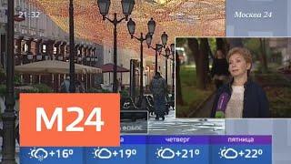 Смотреть видео Синоптики рассказали, когда в Москву вернется бабье лето - Москва 24 онлайн