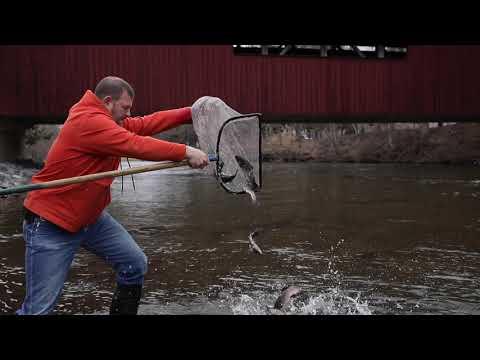Trout Stocking: Pennsylvania Trout Fishing Season 2019