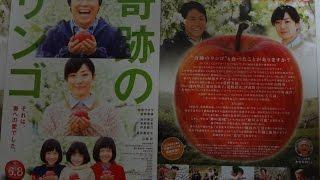 奇跡のリンゴ (2013) 映画チラシ 阿部サダヲ 菅野美穂 池内博之 笹野高史 伊武雅刀