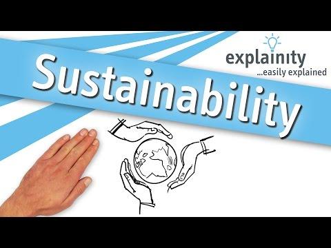 Sustainability easily explained (explainity® explainer video)