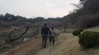 [한국유통신문TV] 파워코리아 권명자전통발효과학연구소장…