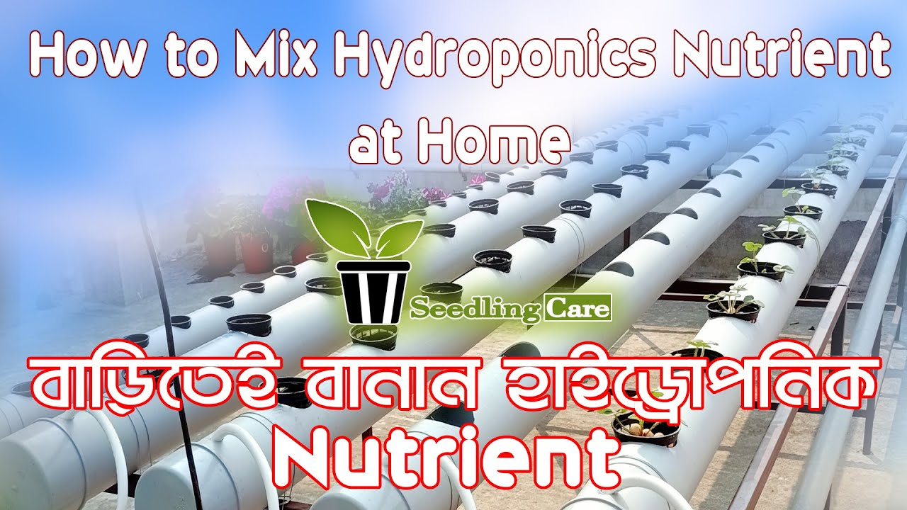 How to Mix Hydroponics Nutrient at Home    Easy Hydroponic ...
