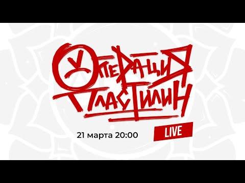 Операция Пластилин Live