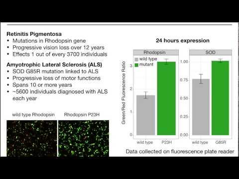 MoBiTec: Cell-Stress-Sensor from Montana Molecular