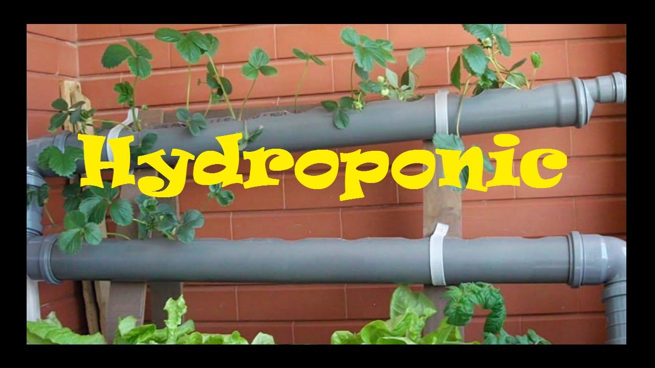 Hydroponics - Homemade Hydroponic NFT