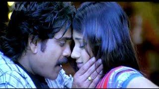 Main Hoon King - मैं हूं किंग   Full Dubbed Bhojpuri Movie 2015   Nagarjuna, Trisha   HD