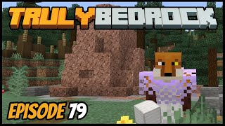 Iron Stealing And Smelter Making! - Truly Bedrock (Minecraft Survival Let's Play) Episode 79