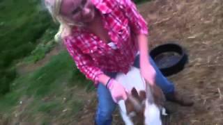 Jodi's Goat Ride