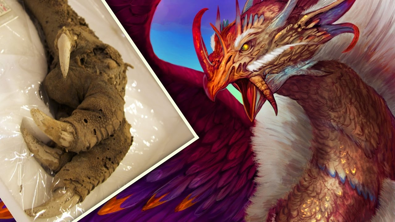 mythical creatures From ancient legends to modern mysteries, our list of mythical creatures covers them all.