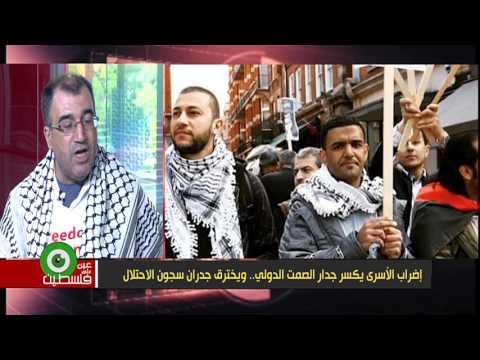 إضراب الأسرى يكسر جدار الصمت الدولي.. ويخترق جدران سجون الاحتلال