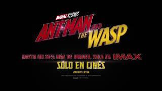 Ant Man and The Wasp se ve mejor en IMAX