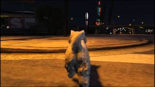 Grand Theft Auto V -PC version- Test for images 動画右下の設定→画...