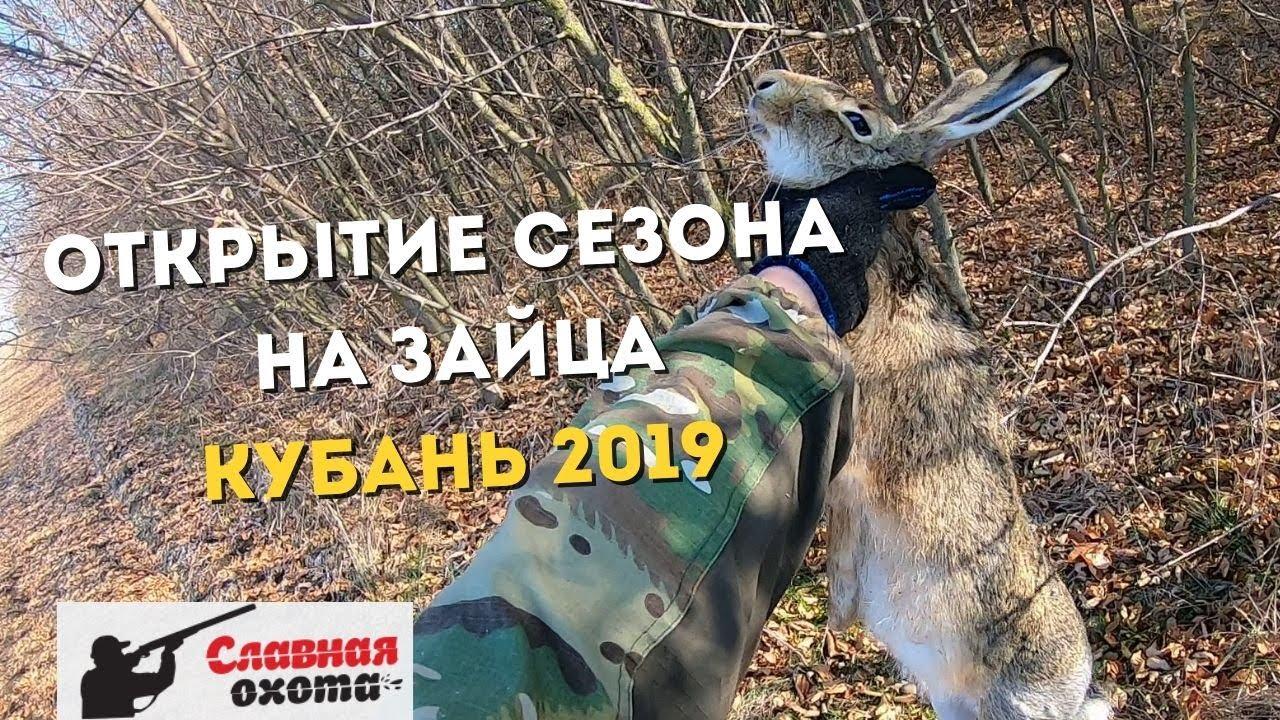 Охота на зайца на Кубани 2019\\Охота на зайца в Краснодарском крае\\Славная Охота