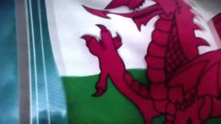 Welsh Rugby Union Commercial