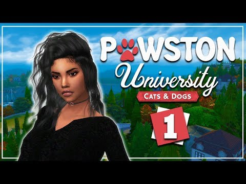 PAWSTON UNIVERSITY 🐾 The Sims 4 Cats and Dogs | #1
