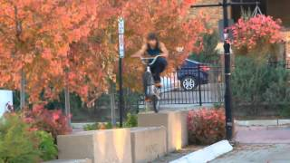 Best of Mike Gray