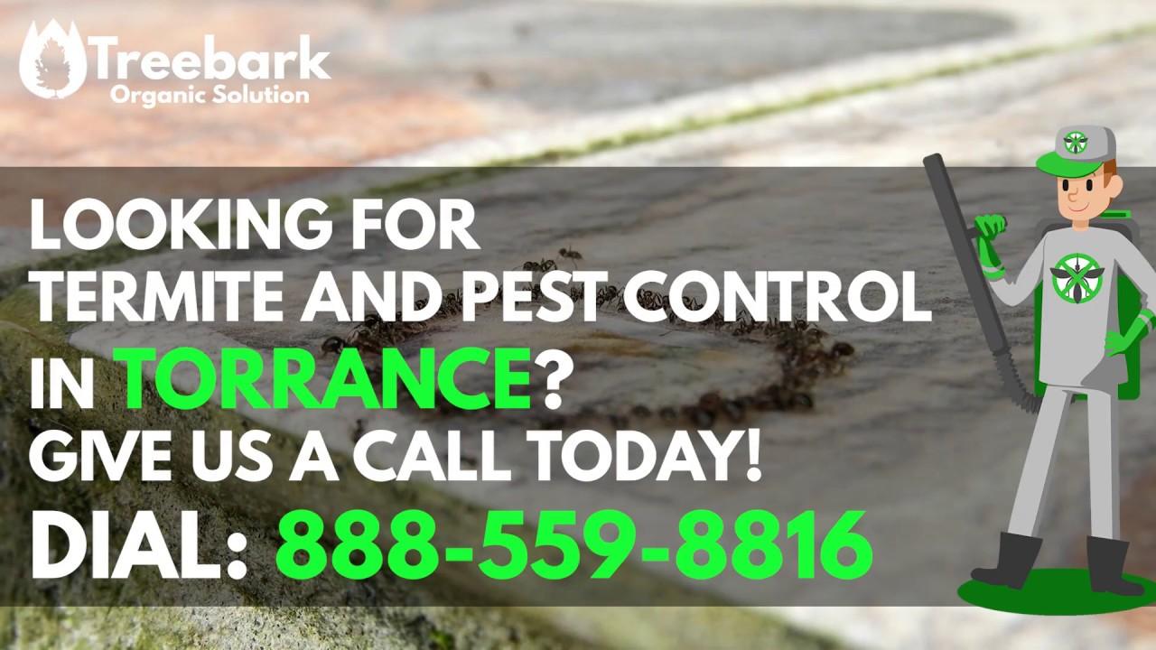 Torrance | Treebark Termite and Pest Control Services