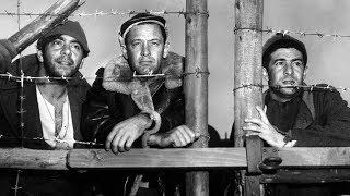 A 17 es fogolytábor ( teljes film ) 1954