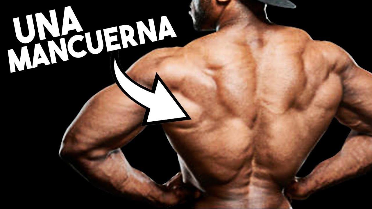 el mejor ejercicio para ensanchar espalda