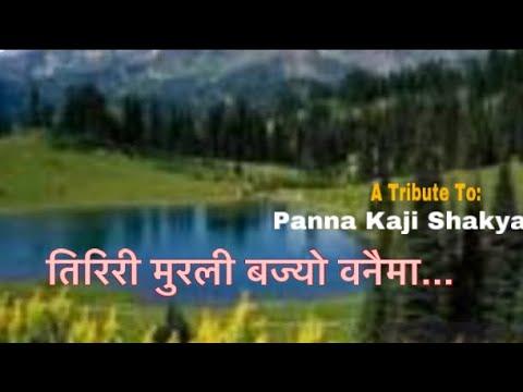 Tiriri Murali Bajyo Banaima    Rebika Safi Ullah    Super Hit Nepali Song(तिरिरी मुरली बज्याे वनैमा)