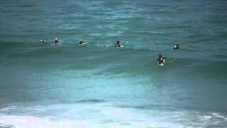Cape Town Surfing with Dolphins (1)