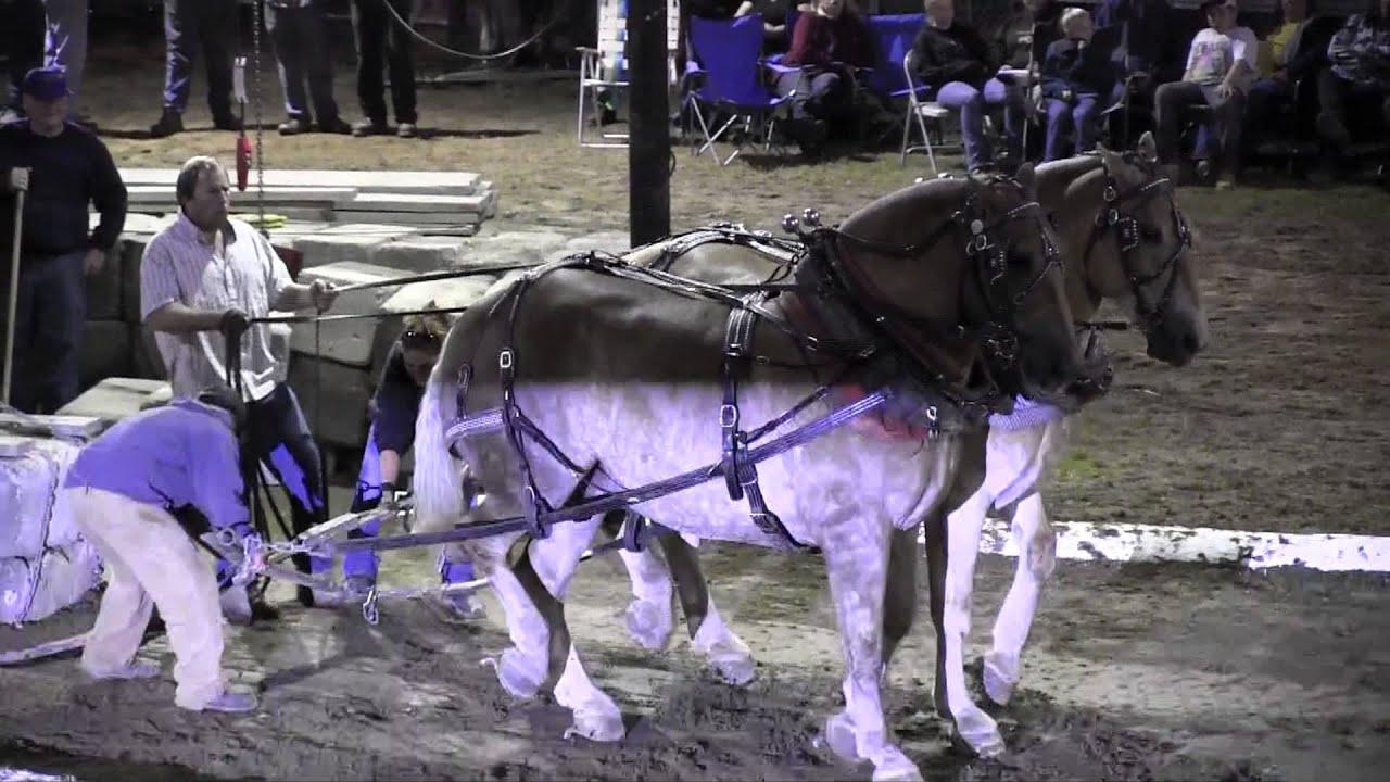 Download Draft Horse Pull 2013 Deerfield Fair NH Pulling Video 34